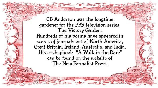 CB Anderson bio